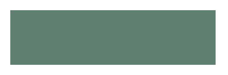 MIP_logo_TM_rgb-5555